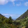 Hike to the Iao Needle, mid-island Maui
